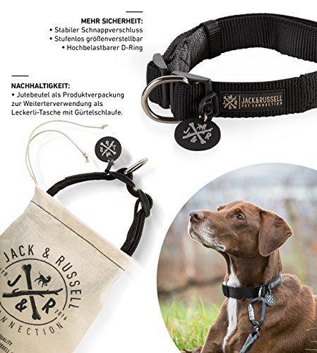 Hundehalsband Balu Neopren gepolstert - Hunde Halsband Jack & Russell div. Größen und Farben (Halsumfang L (43-58 cm), Schwarz)
