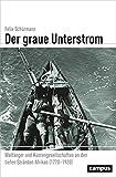 Der graue Unterstrom: Walfänger und Küstengesellschaften an den tiefen Stränden Afrikas (1770-1920) (Globalgeschichte)