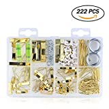 222pcs Photo Picture Frame Hooks Medium Picture Hangers Hanging Assortment Kit for Wall Mounting (Contains the Spirit Level)10lbs 20lbs 30lbs 50lbs100lbs