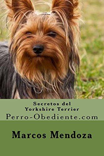Secretos del Yorkshire Terrier: Perro-Obediente.com por Marcos Mendoza