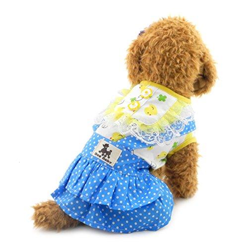 SMALLLEE LUCKY STORE Kleid Ostern Polka Sweet Rock für kleine Hunde, Large, Blau (Sweet 13 Kleider)