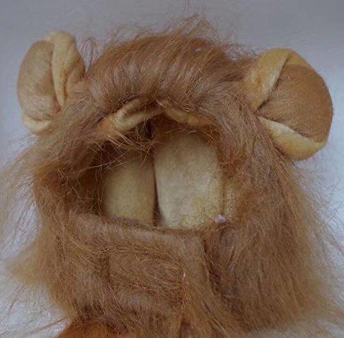 ricisung Pet Hund Hat Haustier Katze Löwe Perücke mit kleinen Ohren, braun (Haustiere Mit Perücken)