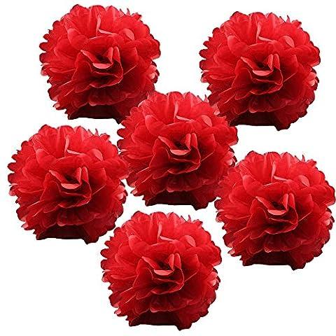 Alxcio 6pcs Boules de Fleurs de Papier de Soie Pompon