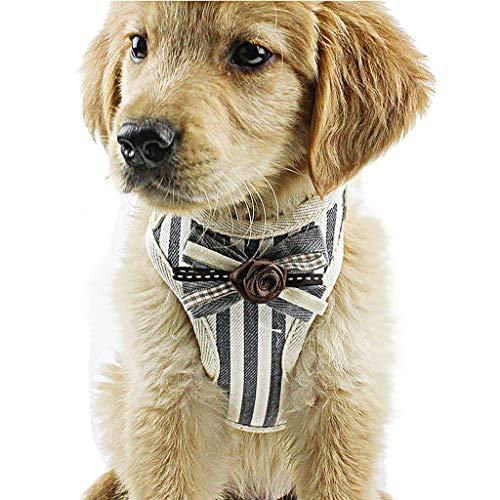 JKRTR Haustier Halsband Klasse 2019,Haustier Hund Brustgurt Streifen Krawatte Hals Brustgurt Komfort Weste(Marine,M) -