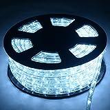 COSTWAY 20M LED Lichterschlauch Lichtschlauch Lichterkette für Außen und Innen mit 720 LEDs Weihnachtsbeleuchtung Weihnachten Deko (Kaltweiß)
