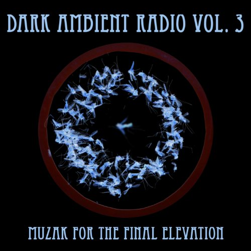 Dark Ambient Radio Vol. 3 - Muzak for the Final Elevation