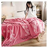 Decken rosa Flannel weiche Flauschige gemütliche warme Studenten Schlafapartment Schlafcouch WYQLZ (größe : 120 * 200cm)