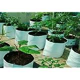 Casa De Amor Thick, Durable, Portable Poly Grow Bags, UV Treated, Virgin Polyethylene Material (Black Inside) Pack of 10 Bags