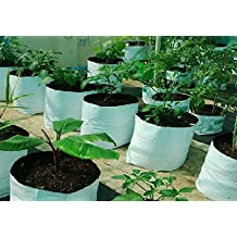 Casa De Amor Plant Bags (Pack of 10, White)