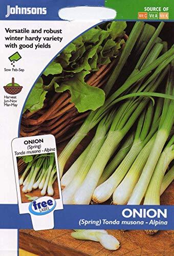 Portal Cool Johnsons - Gemüse - Zwiebel (Frühling) Tonda Musona (Alpina) - 500 Samen