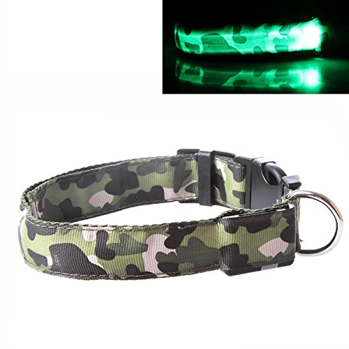 "Collare luminoso per il cane Collare LED ""Militäre"" Tubo luminoso Collare luminoso Collare per cane intermittente misura M Marchio PRECORN"