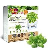 Seed Box Cultívame-Potager Urbain Basilic Blanc