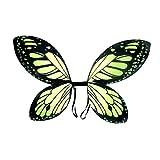 Ver detalles de alas de hada