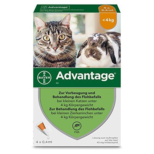Bayer Vital GmbH Advantage 40 mg für kl.Ka 4X0.4 ml -