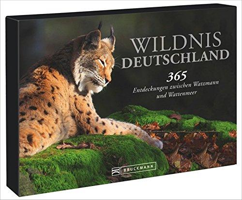 Tischaufsteller – Wildnis Deutschland: 365 Entdeckungen zwischen Watzmann und Wattenmeer