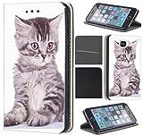 CoverFix Premium Hülle für Samsung Galaxy J5 (Modell 2017) J530F Flip Cover Schutzhülle Kunstleder Flip Case Motiv (450 Baby Katze Grau)