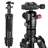 Trípode Cámara Reflex Mactrem Trípode Completo Flexible Tripode Camara Deportiva CT62 con Rótula para DSLR EOS Canon Nikon Sony Trípode para Viajes (Negro)