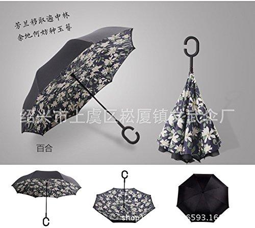 kinine-voiture-mains-libres-double-creatif-inverser-un-parasol-parapluie-publicite-fictifs-parapluie
