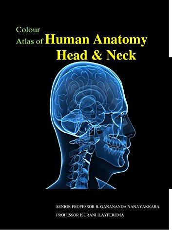 Colour Atlas Of Human Anatomy Head And Neck Ebook Ganananda