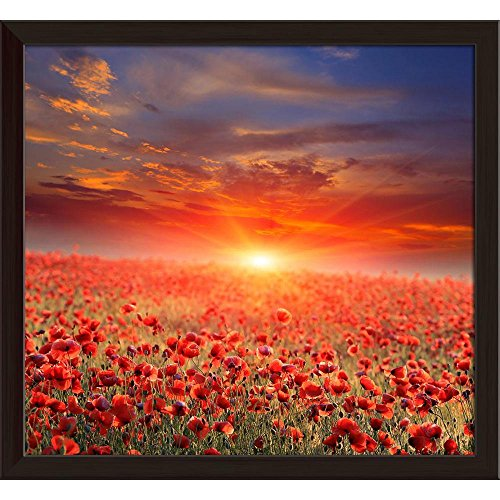 Pitaara Box Sunset Over Poppy Field Canvas Painting Dark Brown Frame 17.5 X 16Inch -
