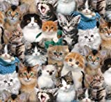 Fat Quarter Katzenrassen Katzen Baumwolle Quilten Stoff
