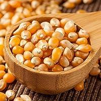 SundarLaxmi Popcorn Kernel Seeds 400gm