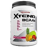 Scivation Xtend BCAAs Muscle Gainers (1.2Kg, Fruit Punch)