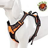 Chai's Choice Pet Products Best Front Range No-Pull Dog Harness, Medium, Orange by Chai's Choice