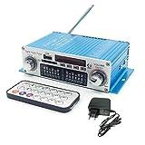 Kentiger HY-602 mini altavoz de alta fidelidad estéreo amplificador digital de potencia con FM Control IR FM USB MP3 Reproducción con cuatro DSP Regard