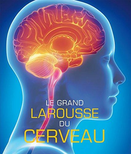 Le grand Larousse du cerveau - Nouvelle édition par Collectif