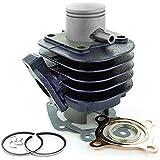 Carenzi - Cylindre Fonte Carenzi Mbk Ovetto Yamaha Neos Fonte