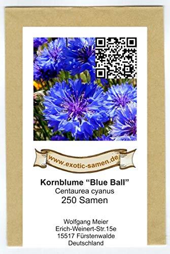 """Centaurea cyanus - Blaue Kornblume\""""Blue Ball\"""" - 250 Samen"""