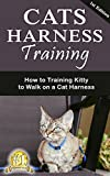 Cat Harness Training: How to Training Kitty to Walk on a Cat Harness