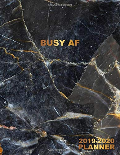 Busy AF 2019-2020 Planner: Pretty Dark Tundra Grey Marble Daily, Weekly and Monthly Planner 2019-2020. Cute Nifty 2 Year Organizer, Yearly Schedule ... and More. (Girly Personal Planners, Band 14)