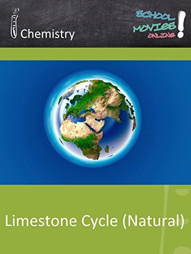 Limestone Cycle (Natural) - School Movie on Chemistry [OV] -