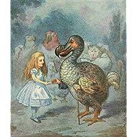A4 Photo Tenniel J Alices Wonderland 1911 Alice & the Dodo Poster