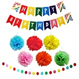 Colorful Tissue Paper Pom Pom Decorations with Happy Birthday Banners - 9 Piece Red, Orange, Blue, Green, Yellow & Pink Tissue Flower Pom Pom Balls with Rainbow Decoration Banners