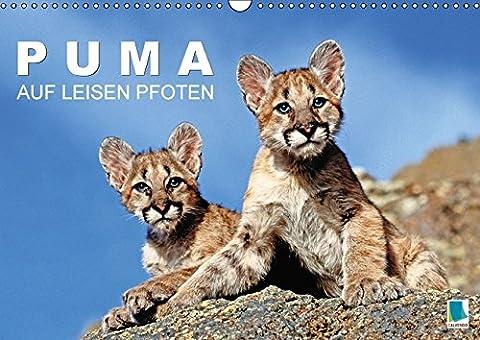 Puma: Auf leisen Pfoten (Wandkalender 2016 DIN A3 quer): Pumas: Geschmeidige Raubkatzen (Monatskalender, 14 Seiten) (CALVENDO Tiere)