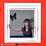Premium Slim Fliegengitter für Fenster als Alubausatz mit Fiberglasgewebe - Profi Insektenschutz - 100 cm x 120 cm weiß
