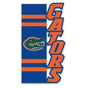 Florida Gators Applique Sculpted Garden Flag
