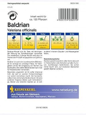 Baldrian Valeriana officinalis von Kiepenkerl - sonstiges Saatgut - Du und dein Garten