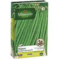Vilmorin 1141754 Pack de Graines Haricot Skipper Création Recommande pour Congélation