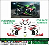Kit adesivi decal stikers KAWASAKI ZX 10 R NINJA 2011 2015 REPLICA SBK 2013 WORLD CHAMPIONS CARENE PISTA