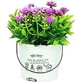 Scrafts Pink Ceramic Base Artificial/Dry/Faux Flowers Arrangement For Home Décor/Living Room Décor/Table Décor/Office Décor/Wedding Décor/Party Décor. LBH(inches)-3x3x5.5