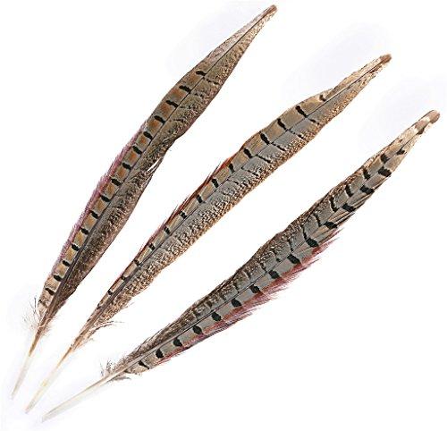 ERGEOB® Plumas, plumas de faisán, 25-30 cm / 10-12 pulgadas de largo faisán cola plumas 10,30,50 pieza
