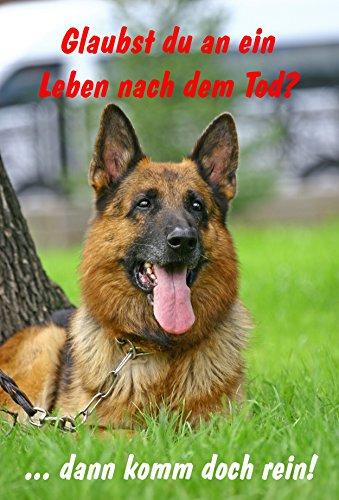 schild-warnschild-achtung-schferhund-glaubst-du-an-ein-leben-nach-dem-tod-dann-komm-doch-rein-hund-h