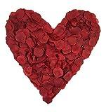 500 dunkelrote Rosenblätter, bordeaux rot - Hochzeitsdeko, Valentinstag, Heiratsantrag, Streudeko, Liebe, Romantisch, Basteln - dunkelrot, Stoff, Valentinsgeschenk, künstliche Blütenblätter