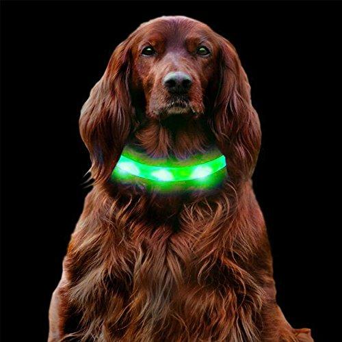 LED Hunde Halsband, LaRooTM Blinkende Leuchtendes LED Sicherheit Halsbänder Katze Hundehalsband Halsband mit USB Wiederaufladbarem Kabel an Haustier Sicherheitshalsband mit Verstellbaren Größe Sitz für Allen Hunde, Haustiers und Katzen - 1PCS of Zitrone
