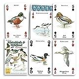 Patrimonio Giocando carte. Uccelli acquatici e Uccelli selvatici Giocattolo]