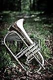 Leon Instrument Bugle modèle 112, laqué